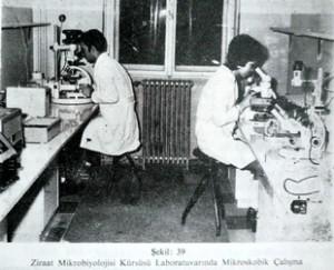 Tarihçe_mikroskop başında